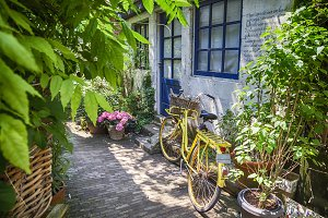 summer street with bike