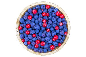 Bowl of wild berries isolated