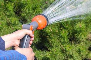 Human hand holding water sprinkler