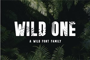 Wild One - A Wild Font Family