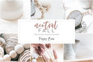 Neutral Fall Collection