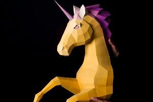 Unicorn - a mythical being symbolizi