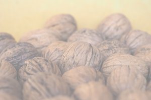 walnut fruit food, soft faded tone b