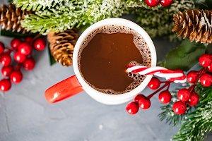 Christmas holiday food concept
