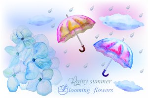Rainy Summer & Blooming Flowers