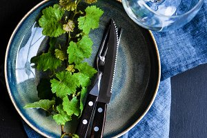 Rustic table setting with ivy