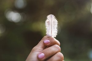 Feather in woman's hands