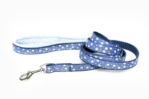 Blue dog leash
