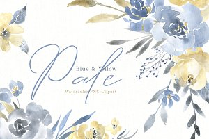 Watercolor Pale Dusty Flowers PNG