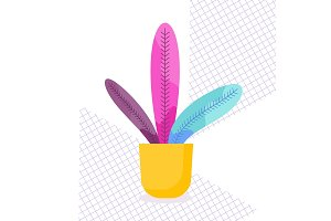 Exotic tropical indoor plant in a