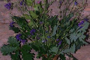 Pot with a bouquet. Rural floristics