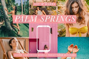 Palm Springs Mobile Blogger Presets