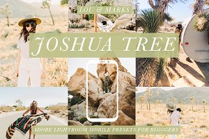 Joshua Tree Mobile Blogger Presets