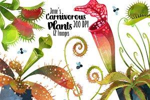 Watercolor Carnivorous Plant Clipart