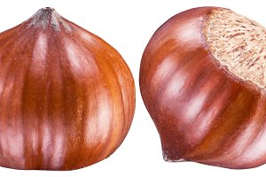 Two perfect ripe hazelnuts or filber
