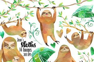 Watercolor Sloth Clipart