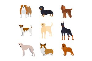 Cartoon Breed of Dogs Collection.