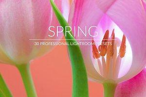 Spring Lr Presets
