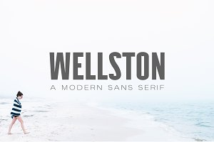 Wellston Modern Sans Serif Font