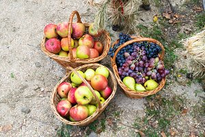 Baskets with apples, pears and