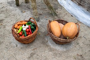 Baskets with vegetables. Assorted