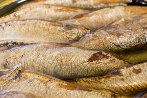 Sprats in the bank. Canned fish. The