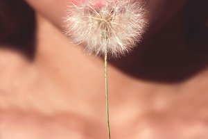 Woman holding dried dandelion