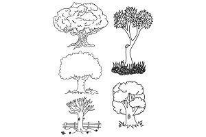 Line Art Tree Illustration Set