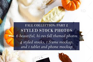 Styled Stock Photography: Fall Part2