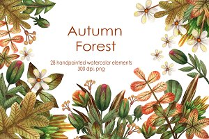 Autumn Forest - Watercolor Clip Art