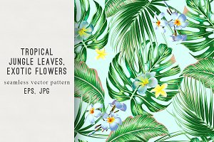 Tropical exotic vector pattern
