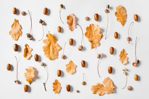 Pattern of autumn leaves and acorns