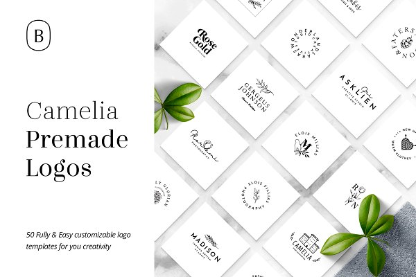 Logo Templates: William Hansen - Camelia - 50 Premium Logo Templates