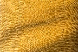 Golden snake skin texture
