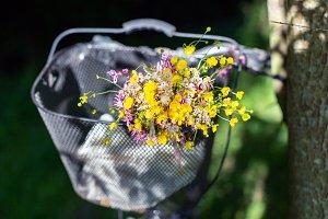 Field flowers in the bike basket