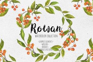 Rowan. Watercolor collection