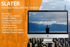 Slater - One Page Parallax HTML v1.3