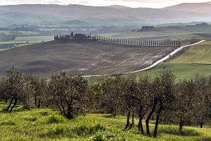 Scenic landscape, Tuscany