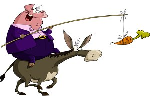 Pig rides on a donkey