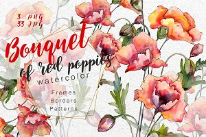 Bouquet of red poppies PNG set