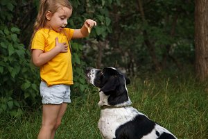 Little girl and mongrel dog outdoors