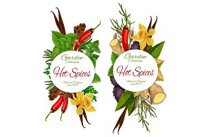 Seasonings spices and herbs vector