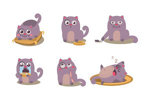 Cute grey cat set, funny animal