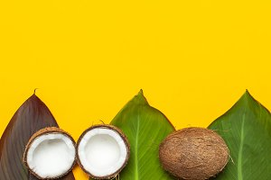 Ripe coconut and tropical leaves