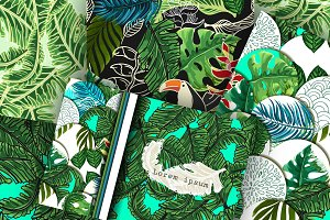 Collection of 5 tropical patterns