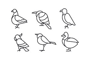 Vector set of birds in linear style