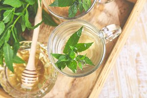 Hot herbal mint tea drink in glass