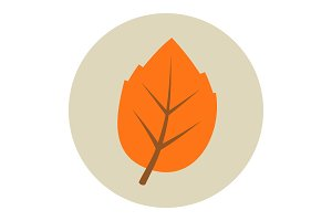 Autumn leaf flat icon