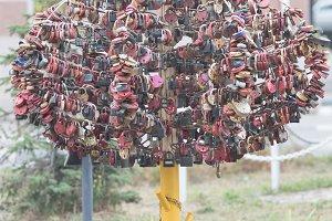 Love tree with colorful locks