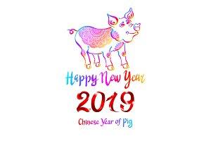 2019 Rainbow Pig Happy new year